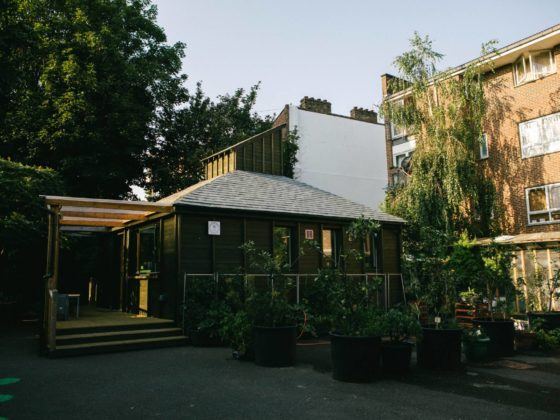 Sunlit low-level building framed by a wooden porch and bamboo plants